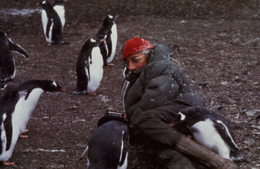 Jacques-Yves Cousteau and Antarctica