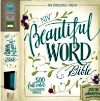 http://www.familychristian.com/niv-beautiful-word-bible-chocolate-turquoise-leathersoft-chocolate-turquoise-leathersoft.html