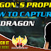 How To Capture A Dragon In Dragon's Prophet
