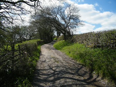 From Romans to Witches - Grimeshaw Lane