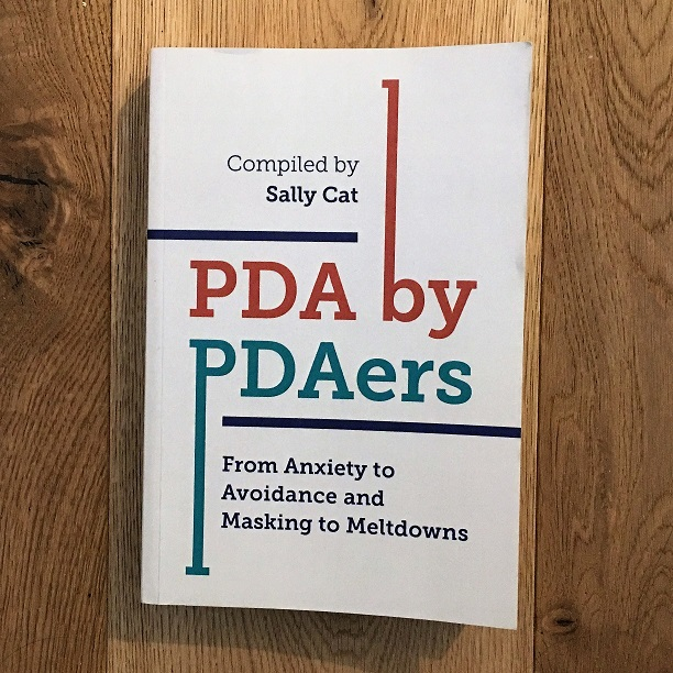 PDA by PDAers book cover
