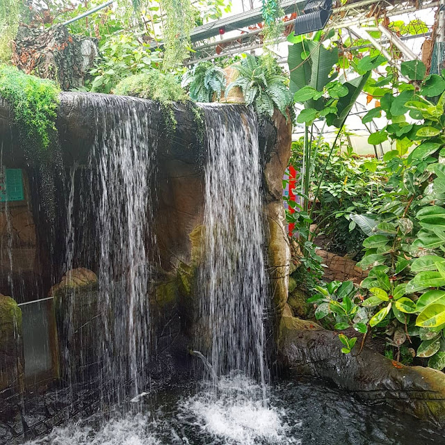 tropical world leeds waterfall