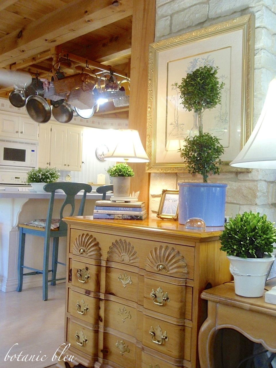 ten-tips-to-grow-french-topiaries