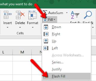 Cara otomatis entri data string di excel menggunakan menu Flash Fill