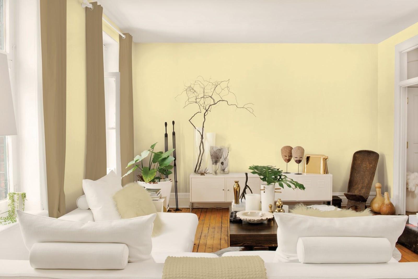 Tips Memilih Warna Cat Agar Rumah Tampak Luas