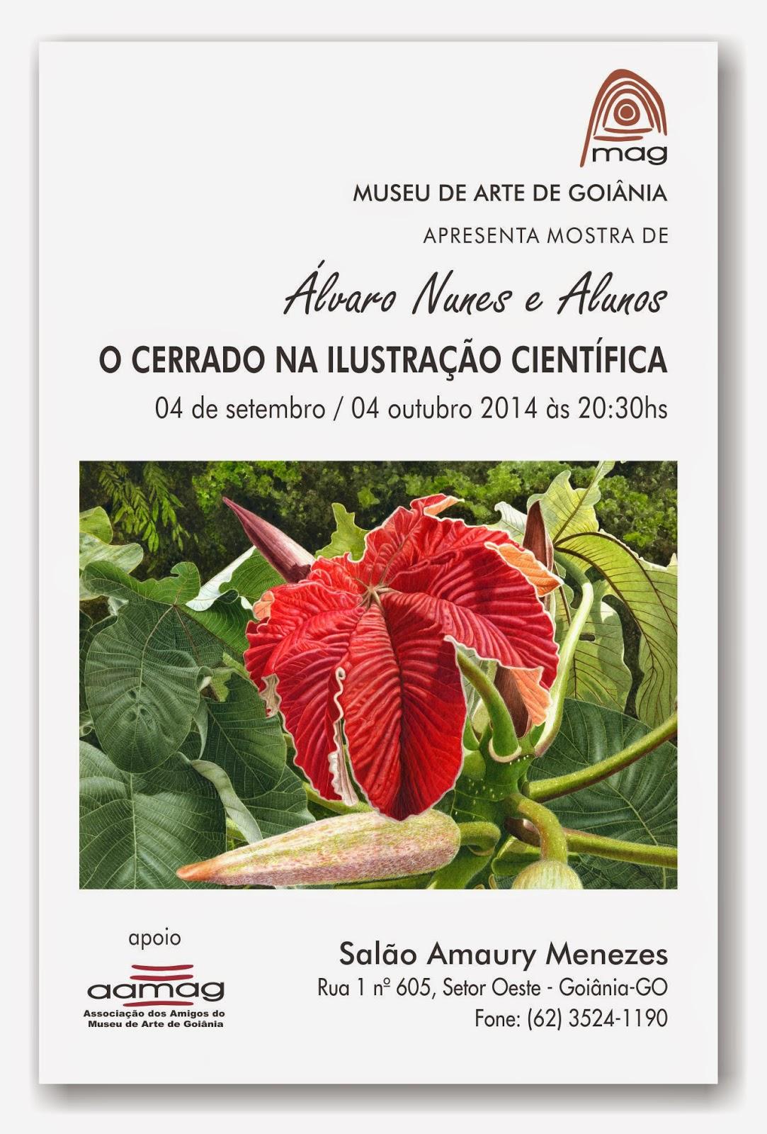 convite exposição ilustração científica botânica cerrado