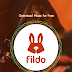 Download MP3 using Fildo Android 2017