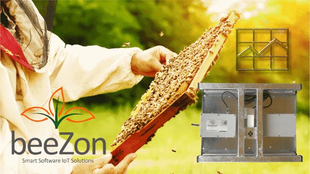 Τι λέει η ζυγαριά της Beezon στο πεύκο τον Οκτώβριο του 2018 στην Εύβοια