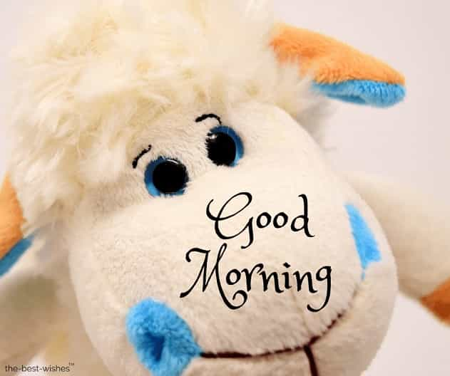 good morning teddy bear pic download