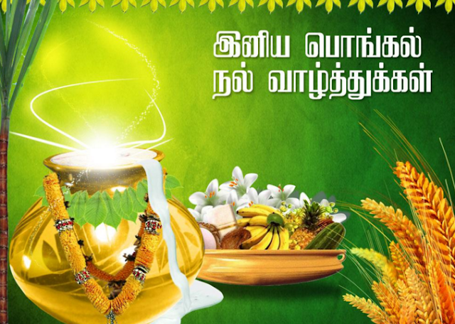 wallpapers of pongal festival in tamil