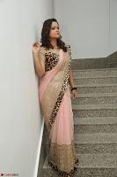 Shilpa Chakravarthy in Lovely Designer Pink Saree with Cat Print Pallu 005.JPG