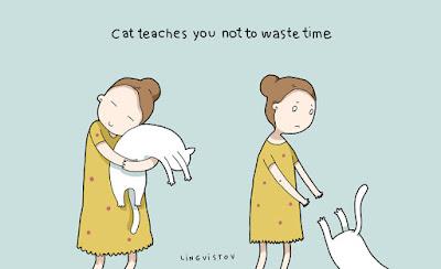 Zamanlı-Kedi