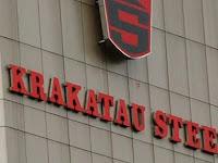PT Krakatau Steel (Persero) Tbk - Recruitment For Professional Hire Program Krakatau Steel May 2019