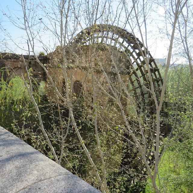 Molino de la Albolafia, Waterwheel  Cordoba