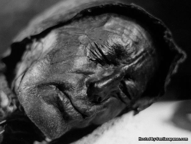 Tollund Man Face