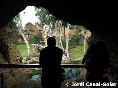 Balcón de los chimpancés en Bioparc