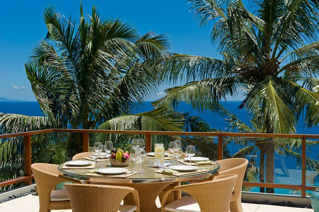 Picture of the ocean through exotic vegetation as seen from the terrace