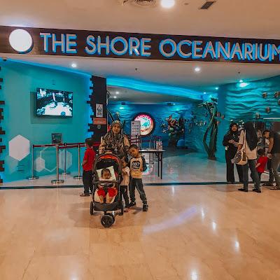 The Shore Ocenarium