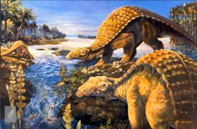 Early armoured dinosaur from Texas lacked cousin's club-tail weapon, but had a nose for danger