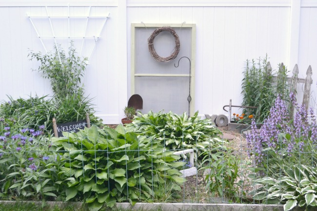 Garden with screen door in background
