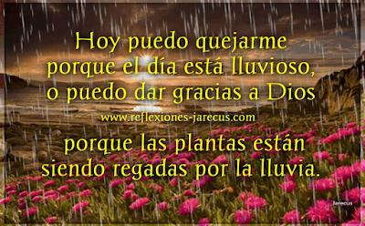 Hoy puedo quejarme porque el día está lluvioso, ✅ o puedo dar gracias a Dios porque las plantas están siendo regadas por la lluvia. Hoy puedo quejarme de mi salud, o puedo regocijarme