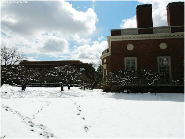 Primavera Nieve 2016 Universidad Harvard
