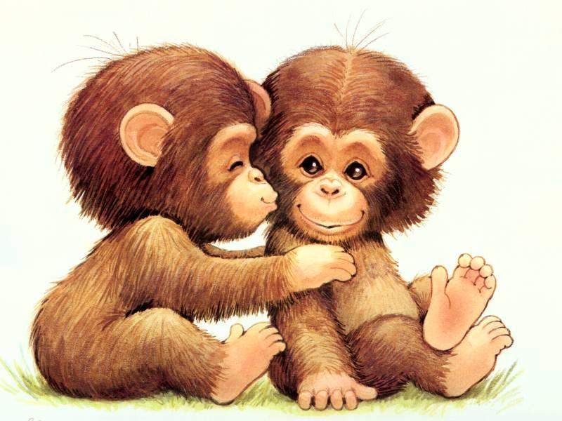 love animals monkey in - photo #34