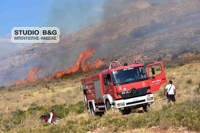 Πυροσβεστικές ενισχύσεις από την Αργολίδα σε Ζάκυνθο και Κάλαμο