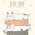 Mèo2- cho người yêu động vật