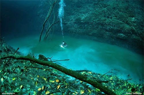 Cenote Angelita, Mystical Underwater River in Mexico