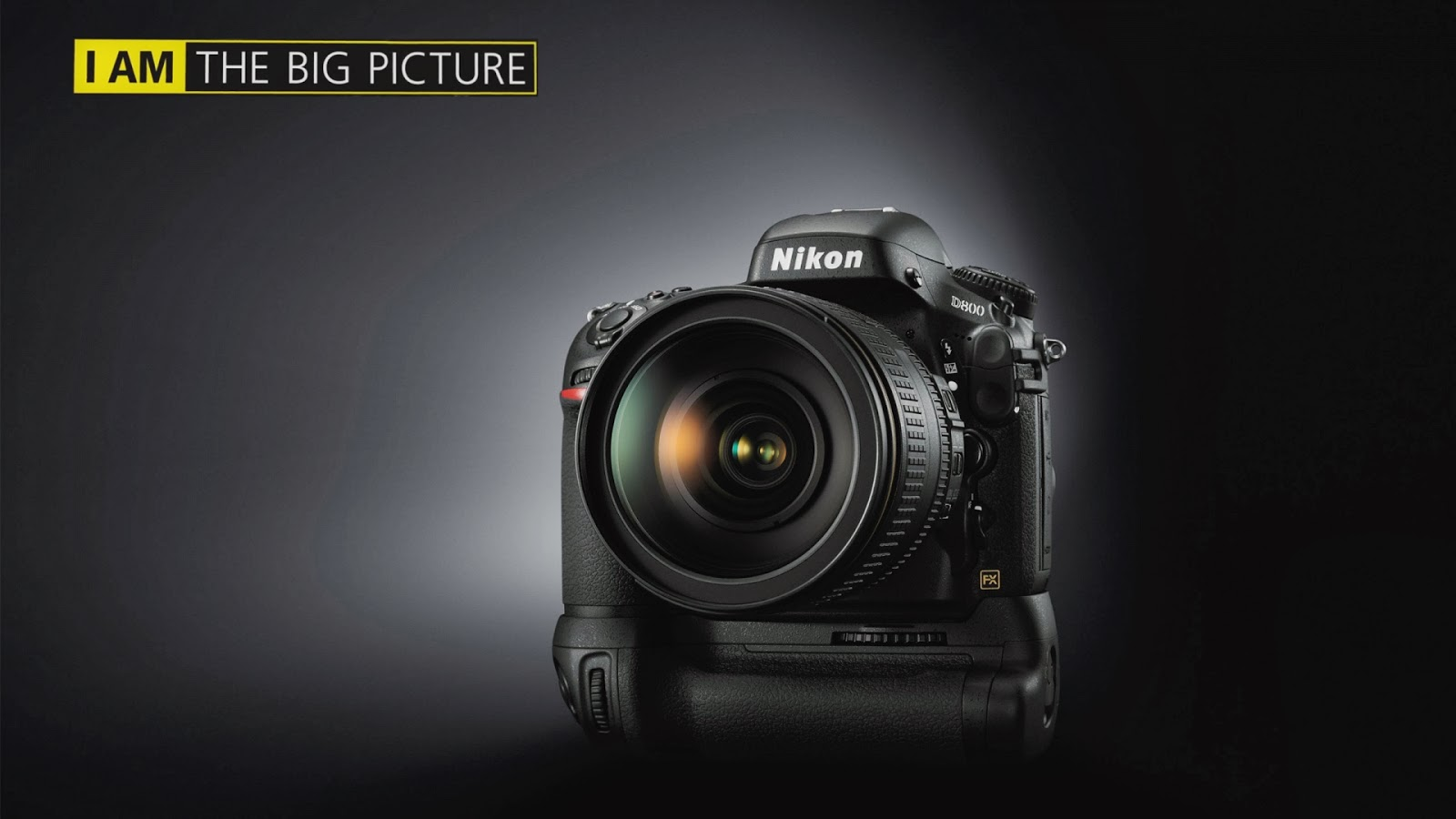 Girl With A Nikom Camera Wallpaper