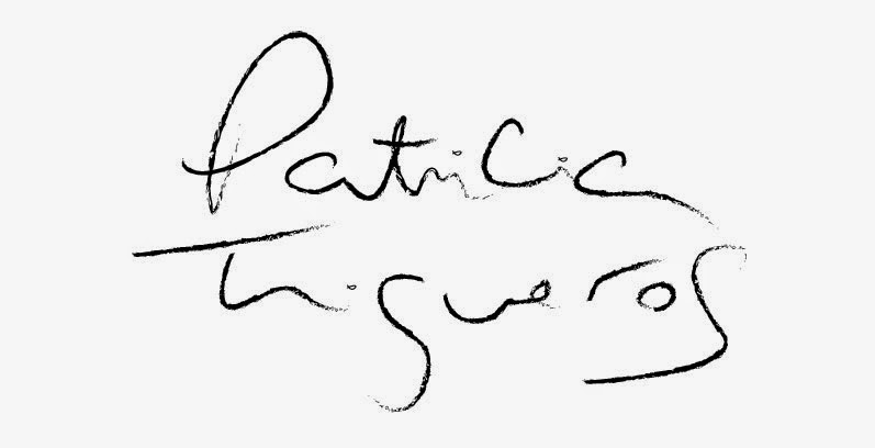 patricia trigueros  cv   contact