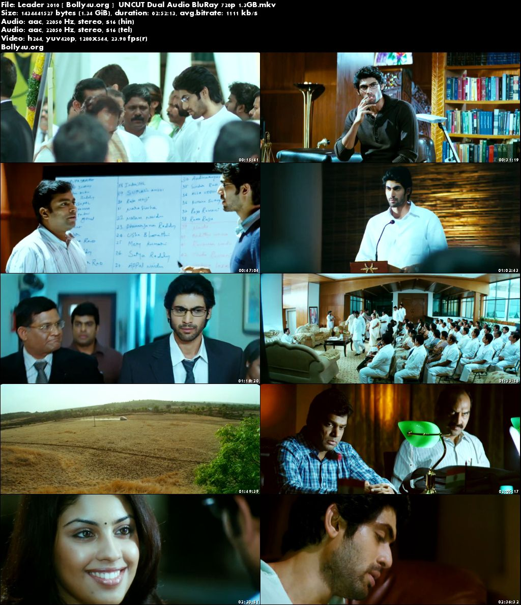 Leader 2010 BluRay 1.3GB UNCUT Hindi Dual Audio 720p Download
