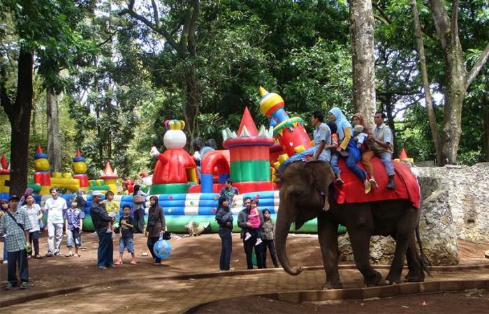 Tempat Wisata di Bandung Pusat  Kebun Binatang Bandung