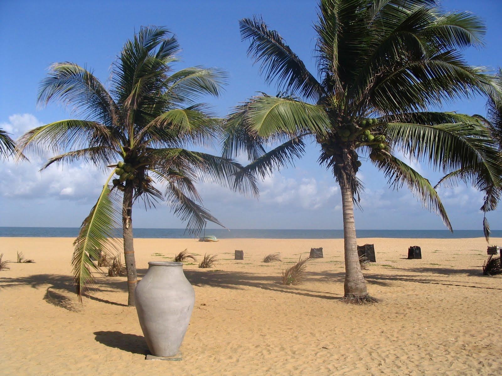 Sri Lanka Tourism Travel Sri Lanka