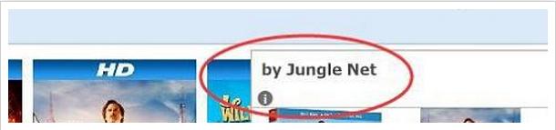 jungle net ads