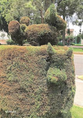 hedge with animal heads