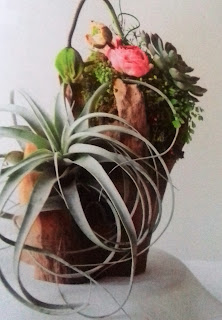 Succulent mixed with Ranunculus flowers. Fit for a guest table and also favors!