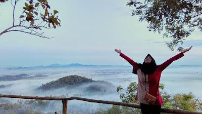 Bukit PJR di Desa Panjerejo Pringsewu Lampung