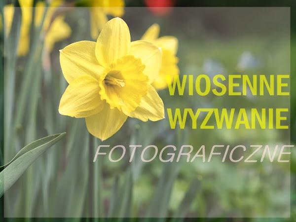 78. FOTO - wiosenne wyzwanie fotograficzne z jestrudo! GALERIA ZDJĘĆ.