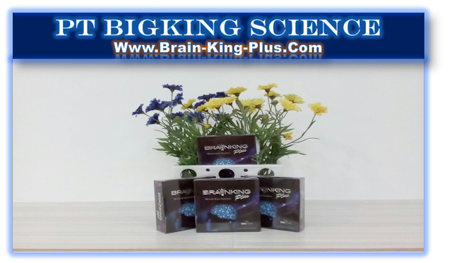 qBrainking Plus International Nutrition, Brain King Plus Nutrisi Indonesia, Brain Nutrition Brainking Plus, Brainking Nutrition
