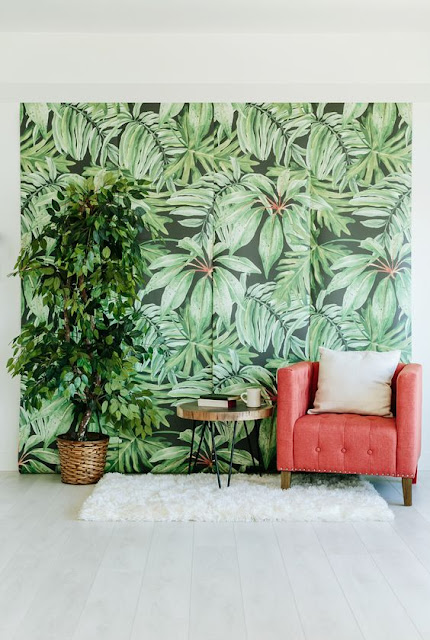 Tendance Urban Jungle
