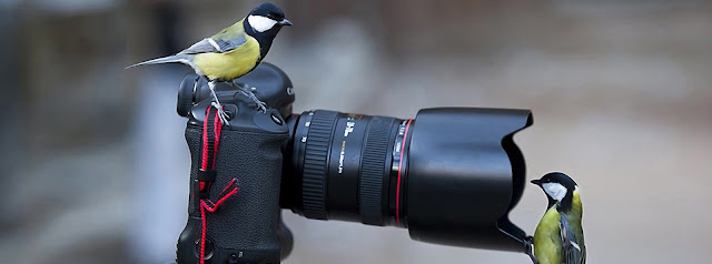 Cho thuê máy ảnh TPHCM