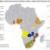 Investasi China Pada Kawasan Ekonomi Khusus (KEK) di Afrika