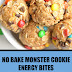 No Bake Monster Cookie Energy Bites (Vegan & Gluten Free)