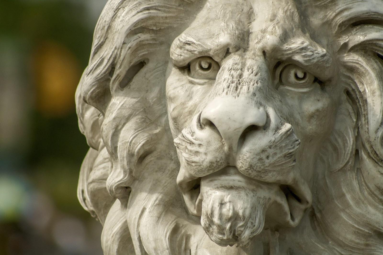 Lwy zarządzania kryzysem