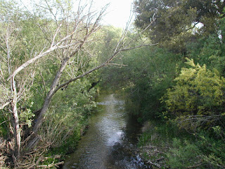 Historic photo of Medea Creek from 2006