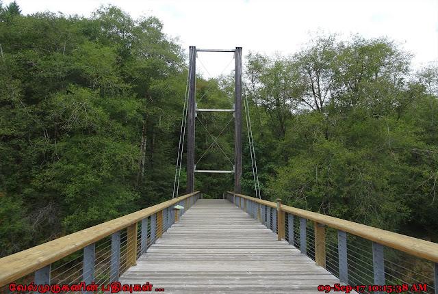 Wilson River Tillamook Visitor Center