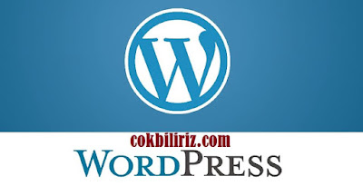 SEO İçin En İyi WordPress Kalıcı Bağlantı Yapısı Hangisidir?
