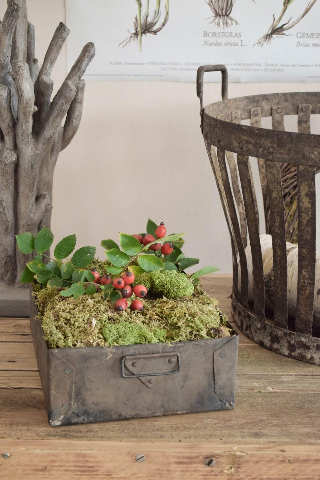 Herbstliche Deko für den Tisch, Sideboard und Konsole. Dekoidee mit Moos, Hagebutte